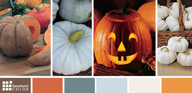 Many Colors of Pumpkins