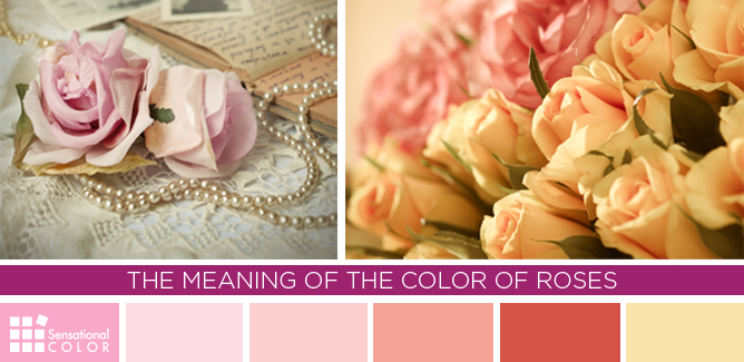 Meaning Of The Color Of Roses
