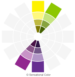 Color Relationships: Creating Color Harmony - Double Compliment