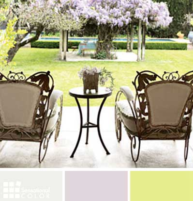 Zodiac Monkey Best Color Combinations For Your Home