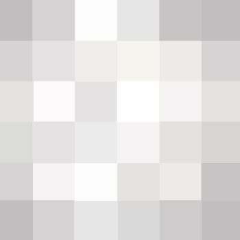 White and Gray Squares