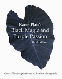 Black Magic and Purple Passion by Karen Platt