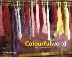 Cover of Book Colorful World by Amandine Guisez Gallienne