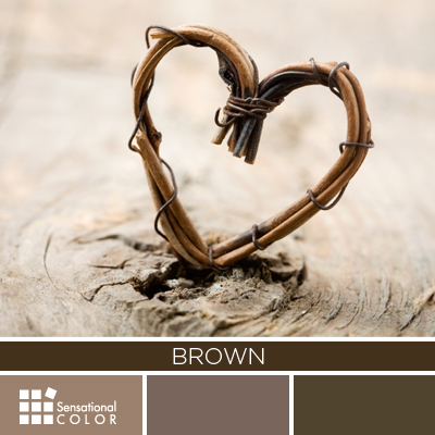 All About the Color BROWN