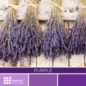 Color Purple: Psychology, Symbolism & Meaning - Sensational