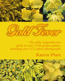 Gold Fever by Karen Platt