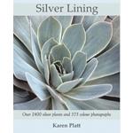Silver Lining by Karen Platt