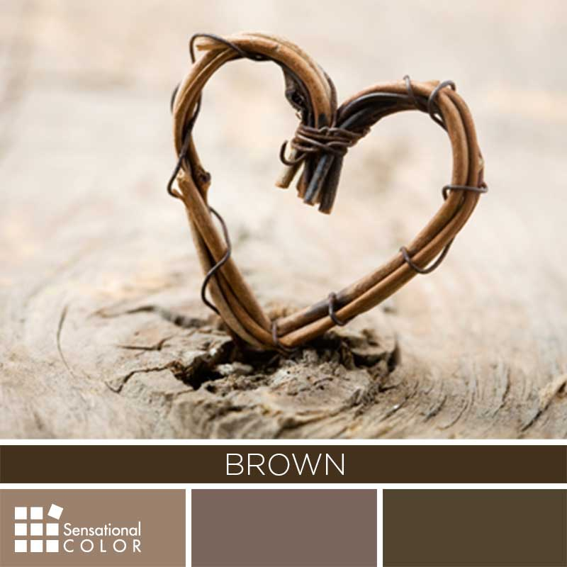 Brown Color Palette Sensational Color