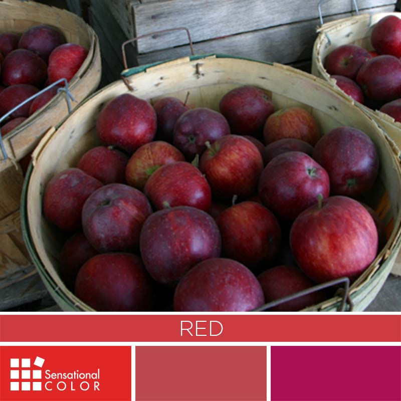 Red Color Palette