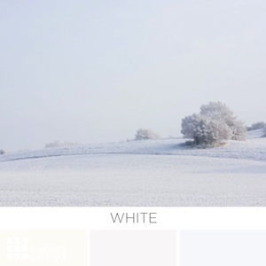 About The Color White