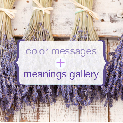Color Messages & Meanings Gallery