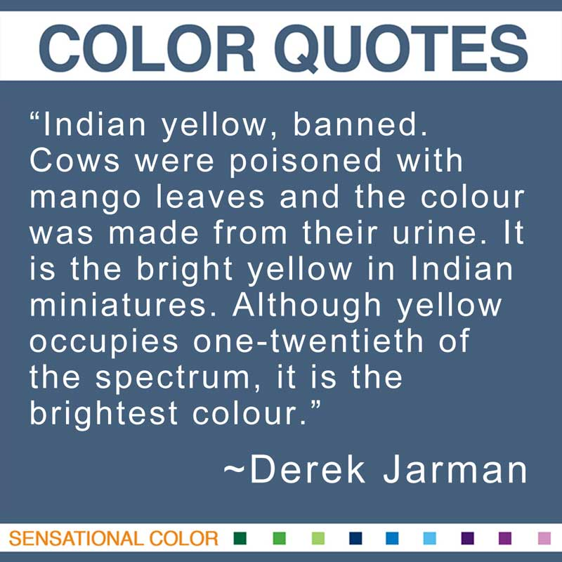 "Quotes About Color by Derek Jarman - ""Indian yellow, banned. Cows were poisoned with mango leaves and the colour was made from their urine. It is the bright yellow in Indian miniatures. Although yellow occupies one-twentieth of the spectrum, it is the brightest colour."""