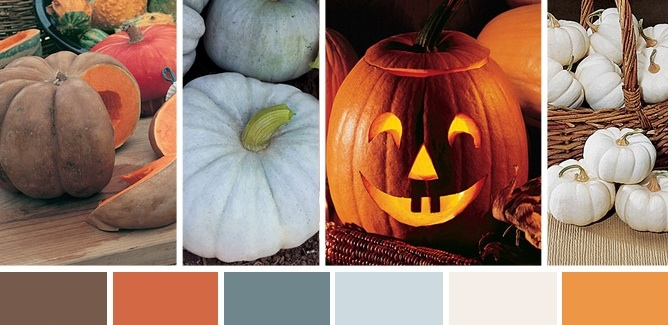 The Color of Pumpkins