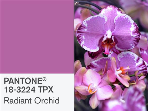 Radiant Orchid 18-3224 is Pantone's 2014's Color of the Year