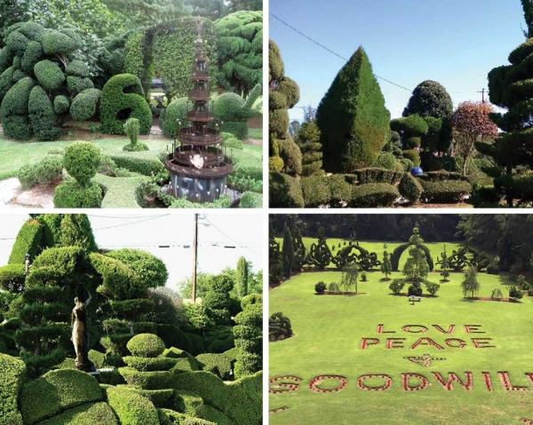 Pearl Fryar Topiary Trees Pearl Fryar Topiary Garden