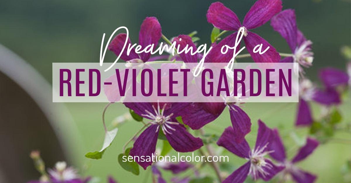 Red-Violet Garden