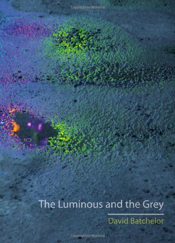 The Luminous And The Grey by David Batchelor