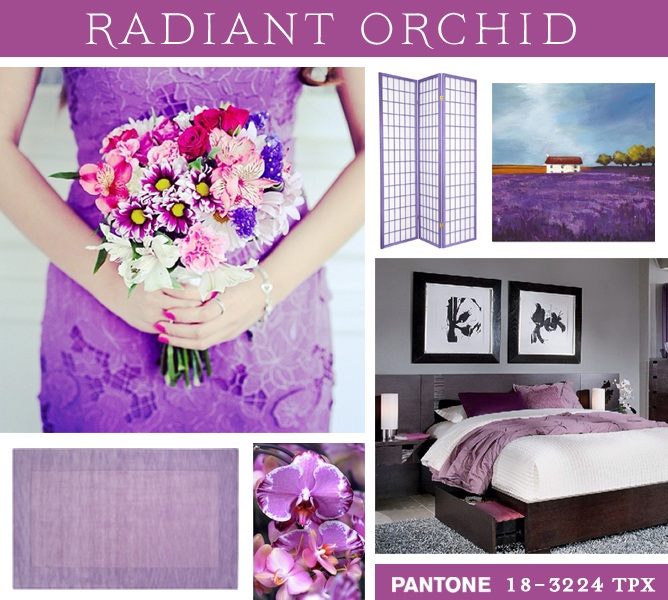 Color of the Year 2014 Pantone Radiant Orchid