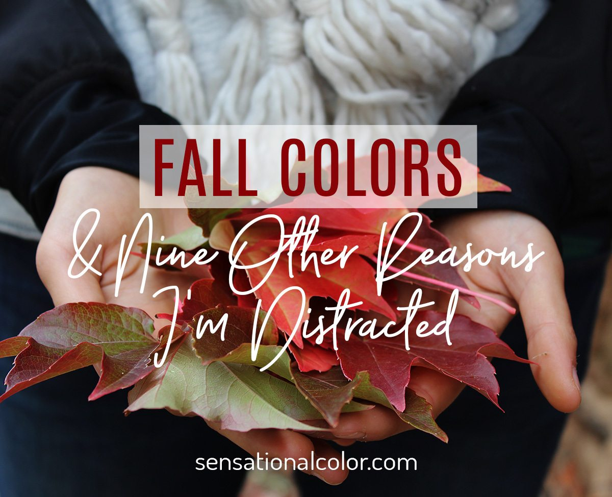 Woman Holding Leaves in Fall Colors