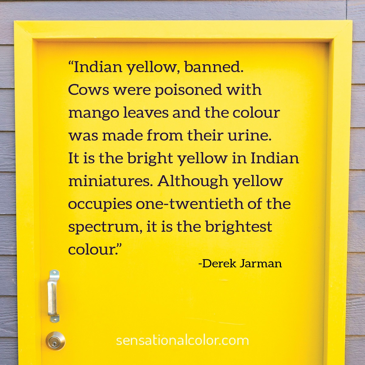 """Indian yellow, banned. Cows were poisoned with mango leaves and the colour was made from their urine. It is the bright yellow in Indian miniatures. Although yellow occupies one-twentieth of the spectrum, it is the brightest colour."" - Michael Derek Elworthy"