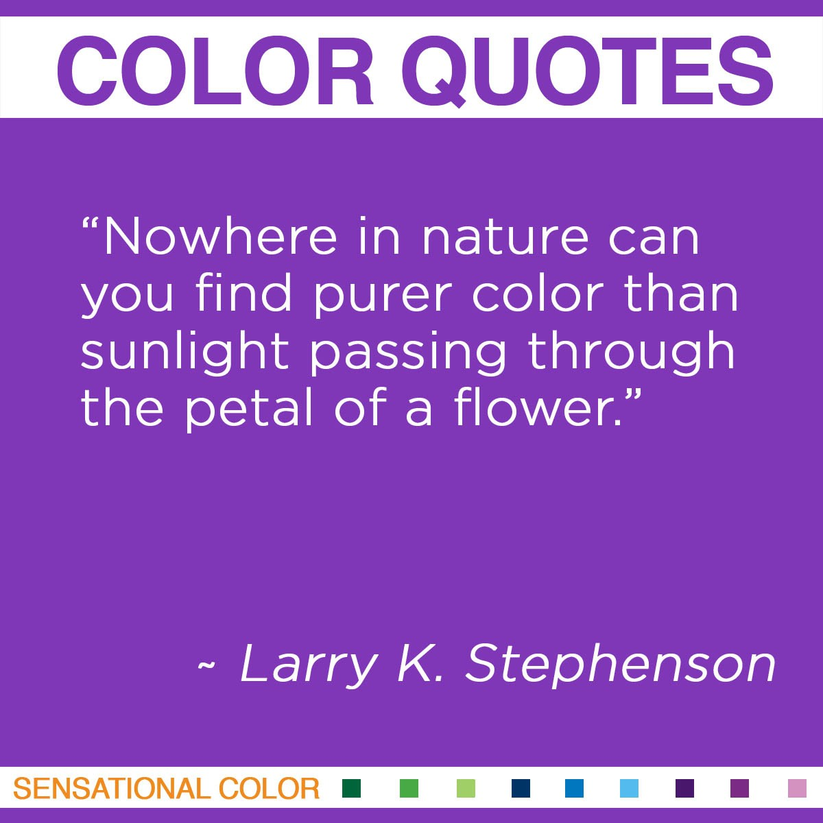 """Nowhere in nature can you find purer color than sunlight passing through the petal of a flower."" - Larry K. Stephenson"