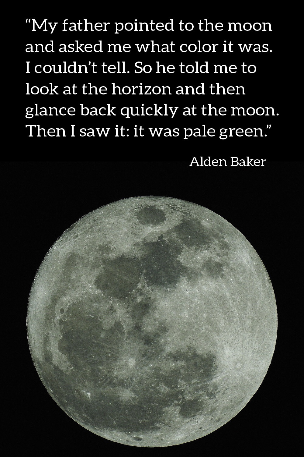Alden Baker Quote About the Color Green