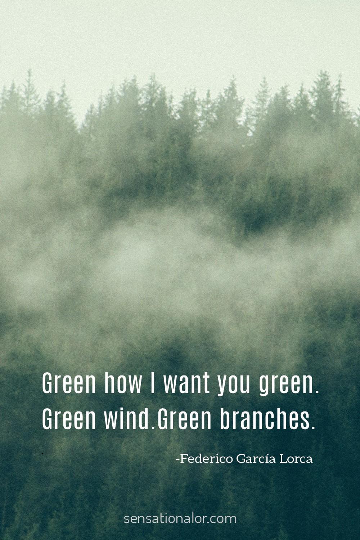 Federico García Lorca Quote About Color Green