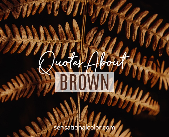 Quotes About Brown