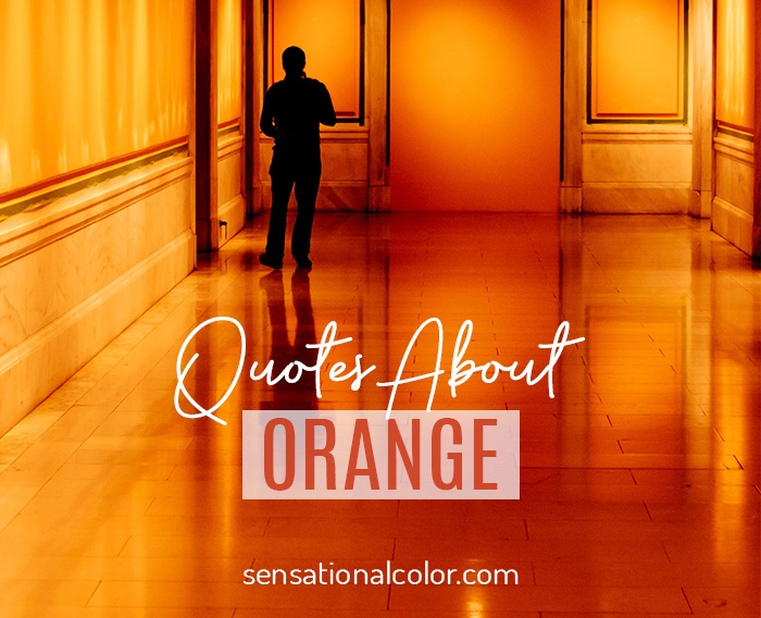 Quotes About Orange