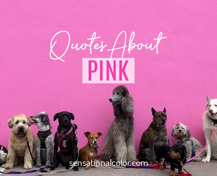 Quotes About Pink